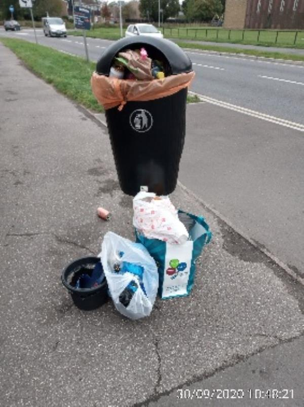 Bin at end of Salisbury Road and coww Lane have investigated please collect -83 Salisbury Road, Reading, RG30 1BW