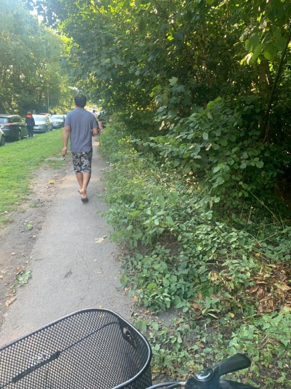 It's by English Martyr's school Pavement is half taken by stinning nettles and weeds also tress by the pavement need a treat -1 Tay Road, Reading, RG30 4DY