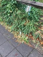 Neighbourhood recycling street sign is knocked over (Located over the fence at the location) on Steyne Road opposite Morrisons car park entrance -  remainder of pole is in the pavement  image 1-35 Steyne Road, Acton, W3 9NU