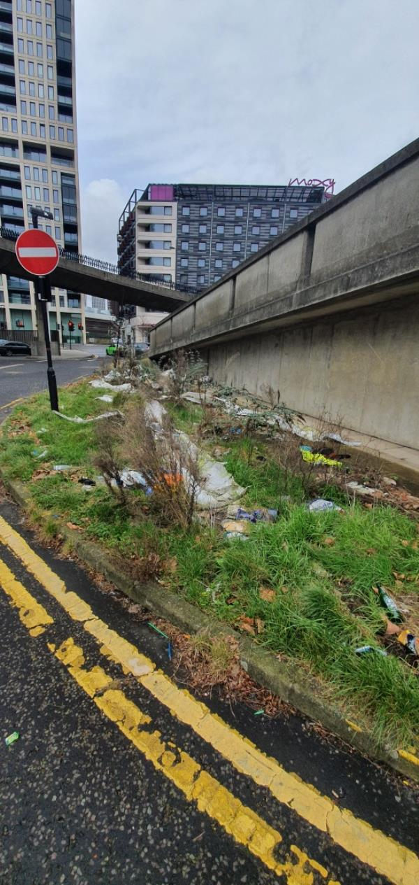 Grass verge area heavily littered.-Service Route 2, London, E15 1XE