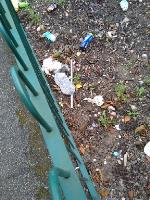 there is a lot of litter around Connaught Rd-16 Connaught Road, Wolverhampton, WV14 6NY