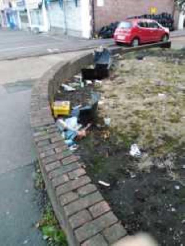 Woodstock Court  Grass verge at Entrance to Service Road is heavily Littered.  Reported via Fix My Street-43b Burnt Ash Hill, London, SE12 0AE