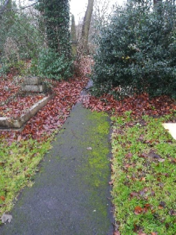 St Thomas Church Yard shrub overhang onto the path just off Graiseley Lane -5 New Heath Close, Wolverhampton, WV11 1PB