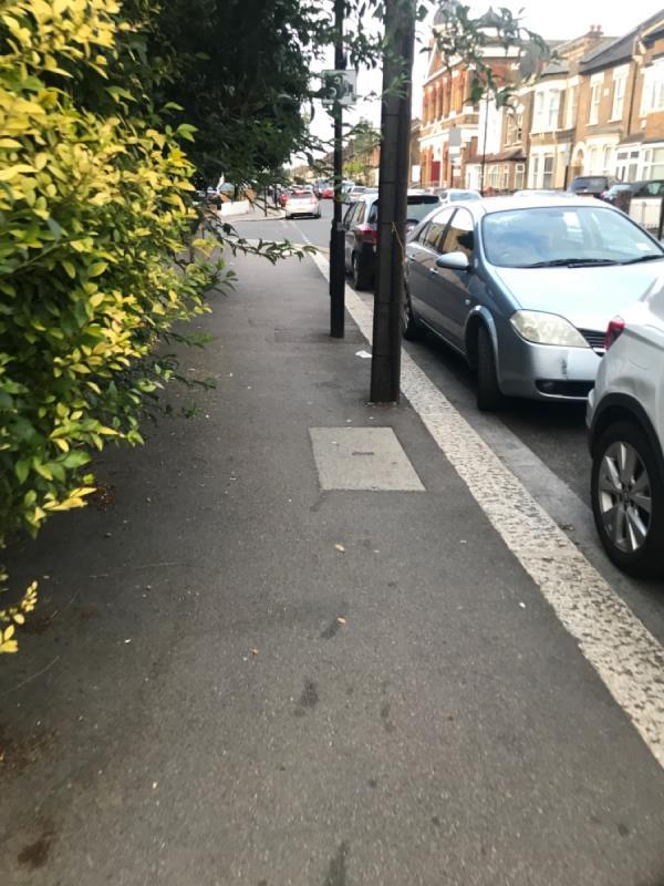 Overgrown bush on public footpath , branches sticking out at eye level, not great-21a Sebert Road, London, E7 0NG
