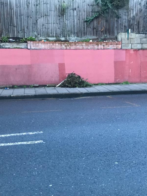 Weeds Shardeloes rd north mobile -153 Shardeloes Road, London, SE14 6RT