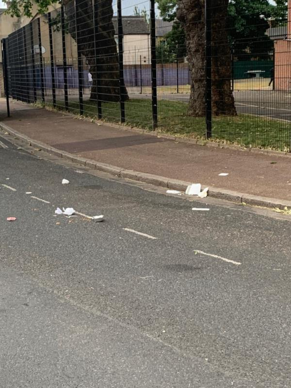Litter dropped in street-25 Upton Avenue, London, E7 9PR
