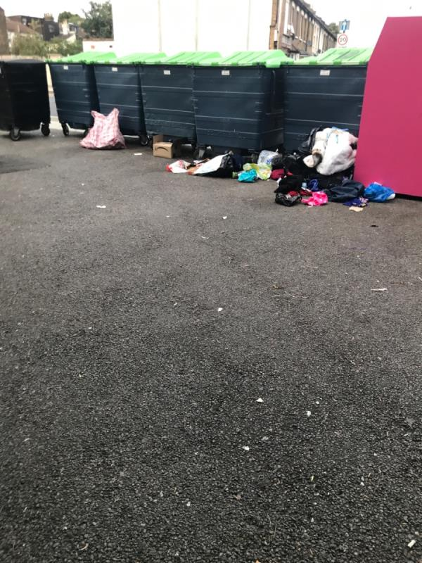 Flytip behind the bins -123 Woodgrange Road, London, E7 0HY