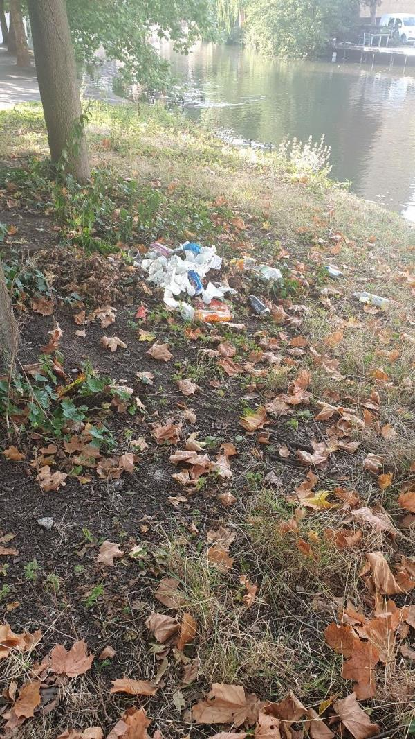 Fly tipping some bad smelling rubbish again :(-2 Sidmouth Street, Reading, RG1 4QY