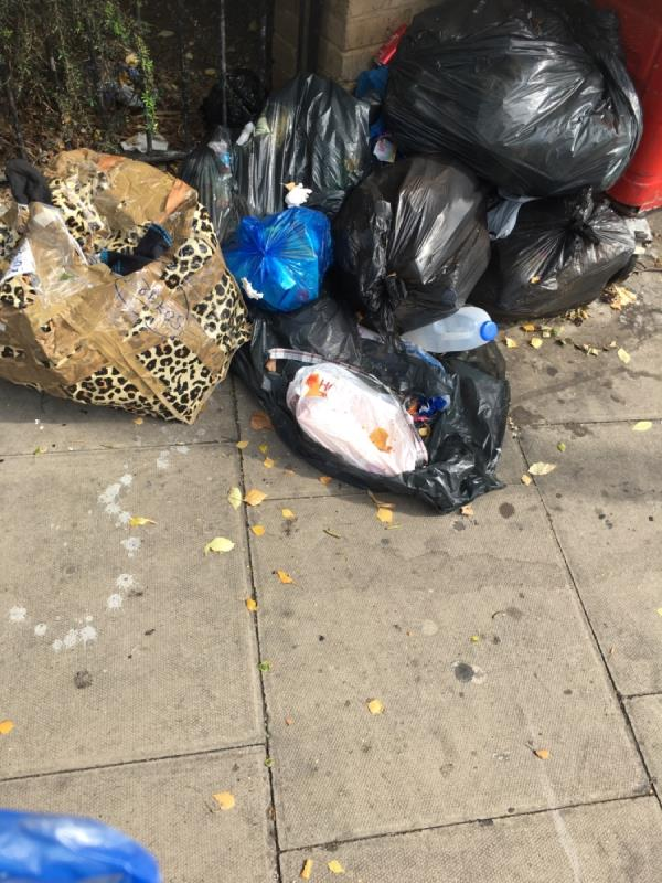 Fly tipping and clean up  image 1-1a Church Street, London, E15 3HU