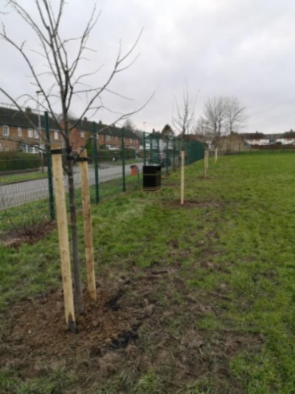 Thank you for the new trees, Allexton Gardens Park. Thanks from us all. -44 Allexton Gardens, Leicester, LE3 6LA