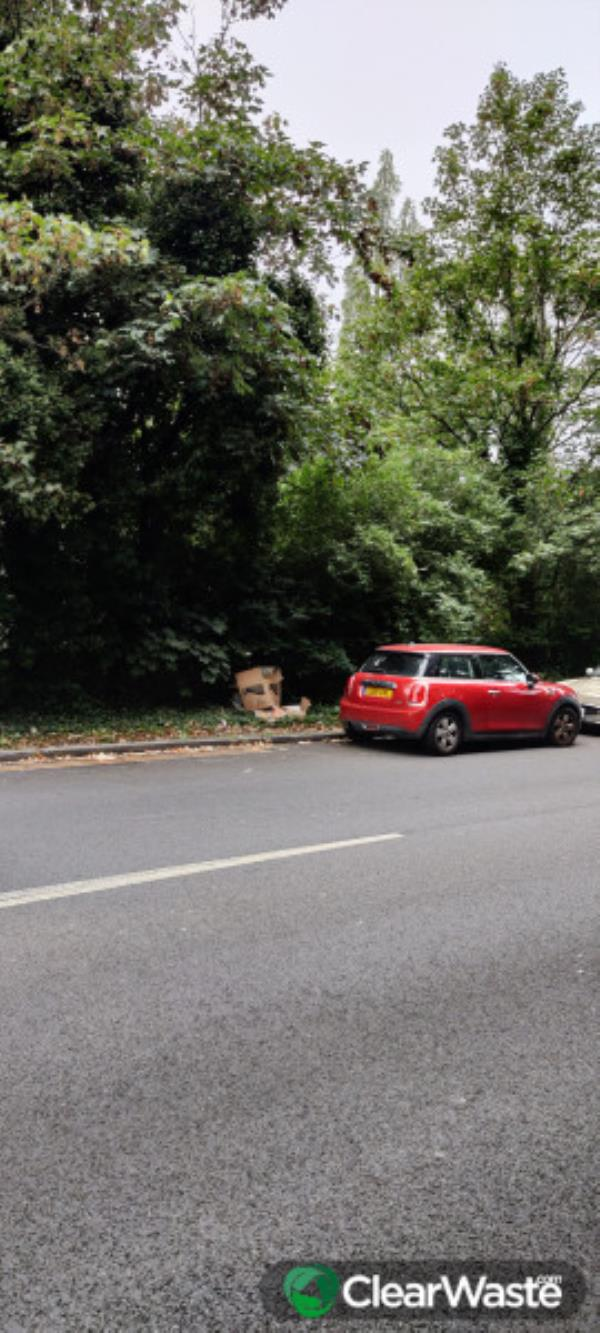 Please clear flytip of cardboard. Reported by Clear Waste-Sydenham rise