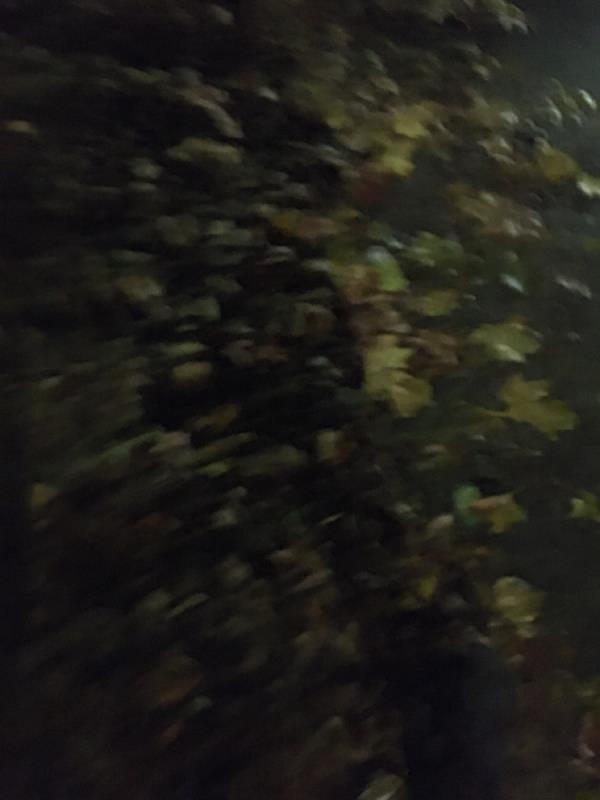 Street swwwp-24 Chant Square, London, E15 4RT