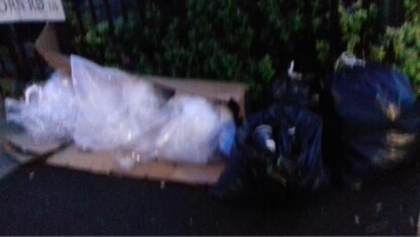 Several bags of wastes and a cardboard box dumped at Holborn Road junction with Cumberland Road -153b Cumberland Road, London, E13 8LS