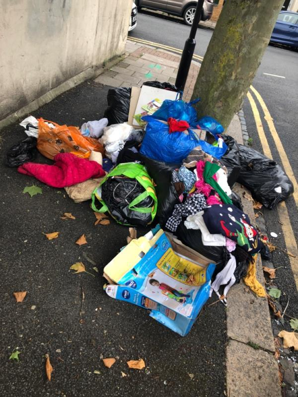 Rubbish left by tree-22 Ratcliff Road, Upton Park, E7 8DD
