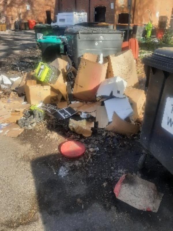 piles of rubbish dumped by bins-36 Yield Hall Pl, Reading RG1 2AH, UK