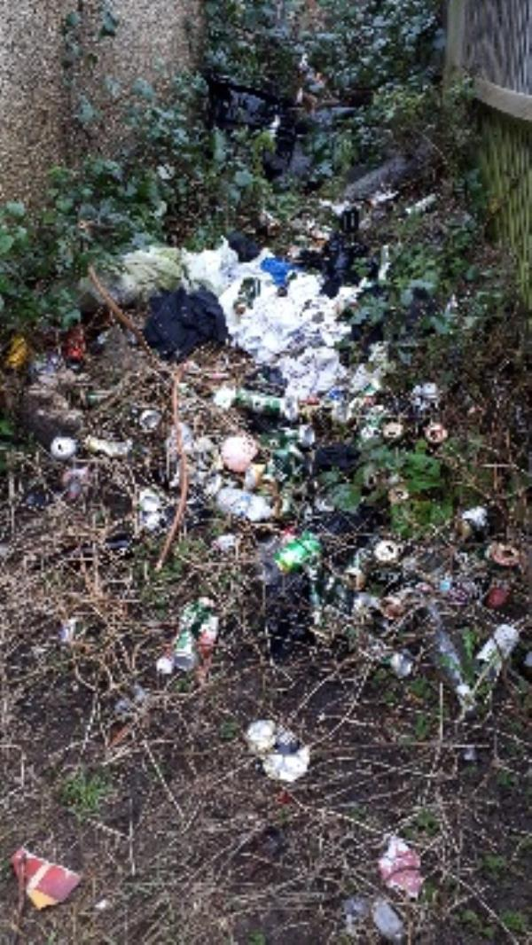 The public footpath between Norcot Rd and Midwinter Close is full of rubbish. It looks like people are meeting there to party.-63 Norcot Road, Reading, RG30 6BP