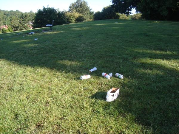 On Saturday morning in Balmore Park Caversham there was a lot of rubbish - the result of a Friday night drink party in the park.  There was a lot of broken glass too.  Together with a couple of dog walkers, we cleared it.  There was a bank card among the rubbish with a name on it.  Do you want it to follow up those who left the rubbish?  I contacted the bank and have cut the card up as advised, but I have the pieces if you want them-Balmore Park