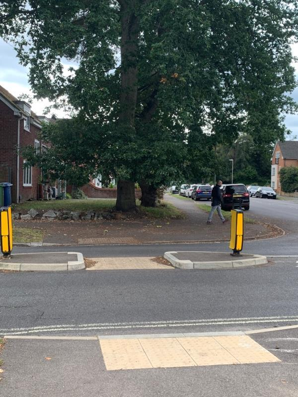 There is a tree over hanging the pavement on the corner of Canterbury Road and Church Road East.  The branches are very low causing people to duck under them. The branches obstruct the view of the road causing risk to those crossing. This is a high pedestrian area particularly at school times. It's not really lead build up but there isn't an option for trees.  image 2-24 Church Road East, Farnborough, GU14 6QJ