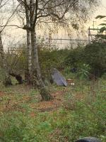 Tyres, genera rubbish bags and a tent all in the woodland at the bottom of Tesco car park (by the recycling). image 2-184 Luscinia View Napier Road, Reading, RG1 8AG