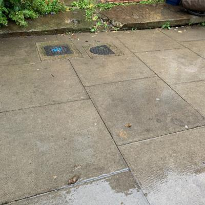 Dog mess left by owner outside 75...-75 Clissold Cres, Stoke Newington, London N16 9AR, UK