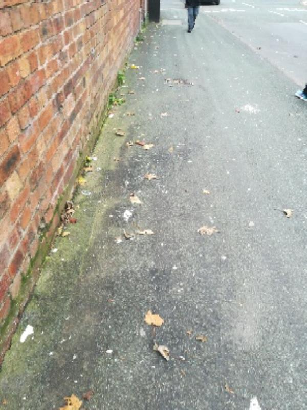 Broken glass on pavement side of the cafe on  Annan Road -2 Hendon Close, Wolverhampton, WV10 9BQ