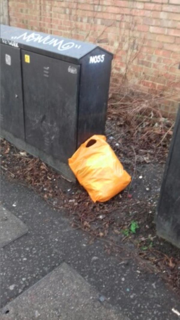 A bag of wastes dumped in the alley way opposite 61 Cave Road -59 Cave Road, London, E13 9DX