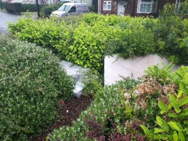 mattresses jumped in shrub bed old heath rd and deansfield rd. -2 Deansfield Rd, Wolverhampton WV1 2JX, UK