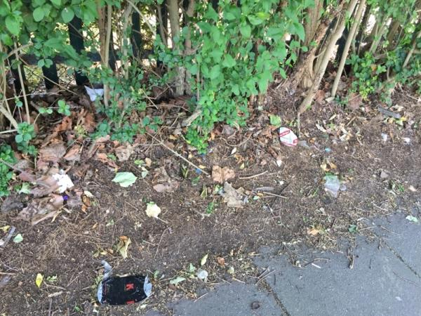 Lots of litter lying on huge abandoned  pile of twigs and branches and in bushes heading down Wartling Road-2 Wartling Rd, Eastbourne BN22 7PG, UK