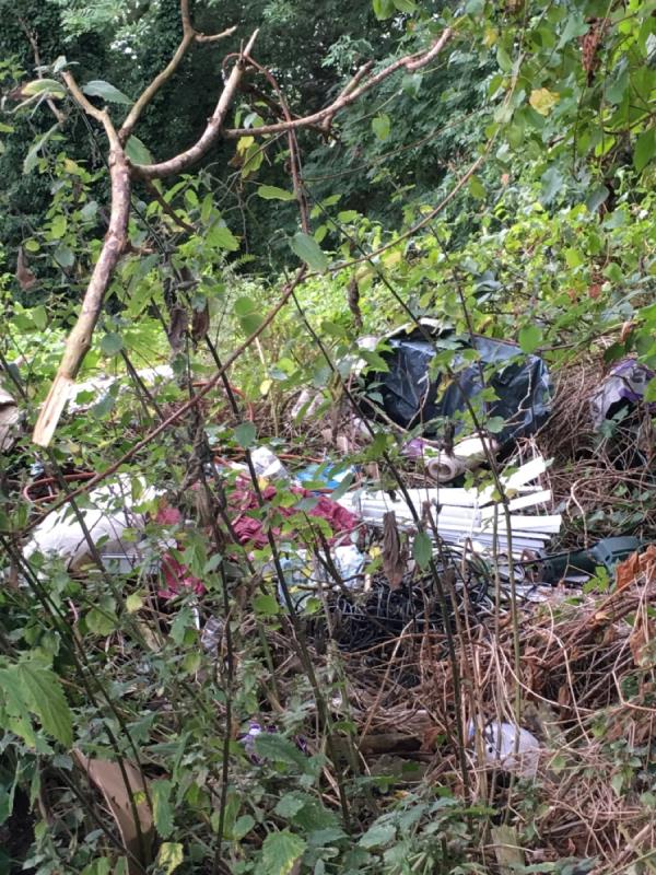 Fly tipping still there. I reported it in June 2021, but it wasn't actioned. More rubbish being tipped, window blinds, bin bags, more rubbish.-Bramber Mews, Reading, RG4 9QT