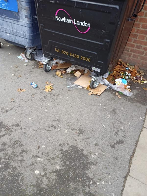 Litter and rubbish collecting under bins and in general area-138 Earlham Grove, Forest Gate, London E7 9AS, UK