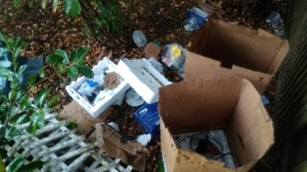 Flytipped boxes and fencing items no evidence taken  image 1-2 Monksbarn, Reading, RG2 7RP