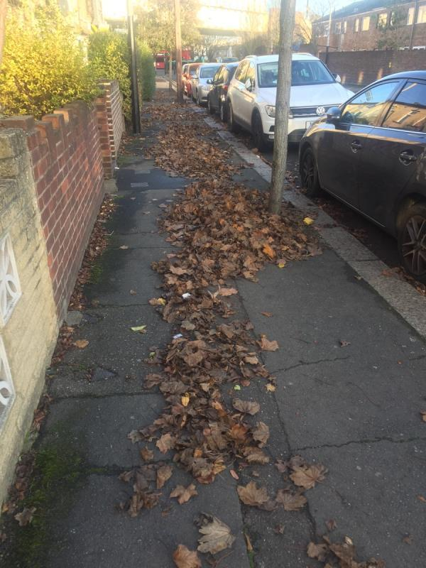 Stracey road needs to be swept. The pavement is covered with leaves. It appears that someone has blown all the leaves onto the pavement and not bothered to swept it and discard of it -16 Stracey Road, London, E7 0HQ