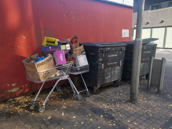 the commercial bins by Salway Place near Newham College , Wilko's loading bay, have been overflowing & used as general dump & dirty & stinky for ages,real eyesore & nosehold & health hazard .-1 Salway Pl, London E15 1NN, UK