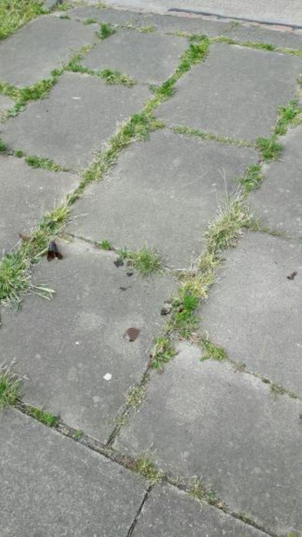 Broken beer bottle on footway.-80 Sturdee Road, Leicester, LE2 9EB
