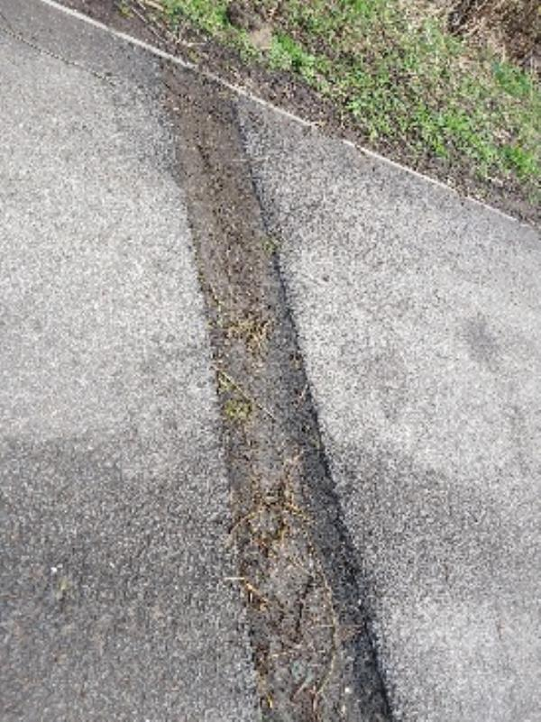 kings meadow path at side of Luscindia View deep trenches on footway next to first  3 lamp posts eg 11521 11522. SEC need to reinstate tarmac properly it is a trip hazard.-14 Napier Road, Reading, RG1 8AB