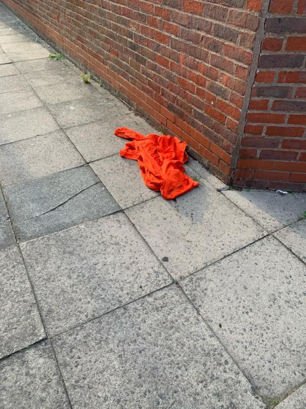 There has been bottles left everyday and builds up daily. Now someone is sleeping in this area and human pop has under the jacket. The foxes have played around with the jacket and left their own poo. It is right outside my door where I live.  image 1-22 Walnut Gardens, London, E15 1LL