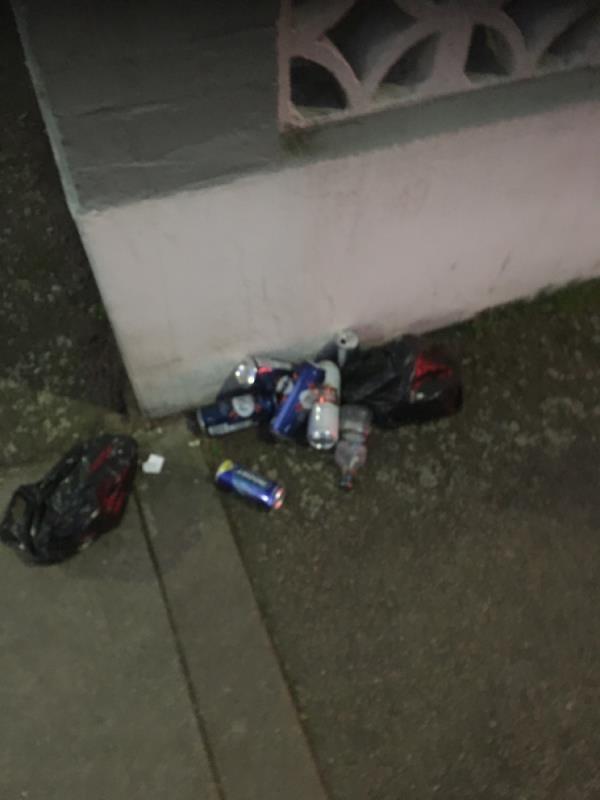 Rubbish -138 Shelley Avenue, Manor Park, E12 6PU