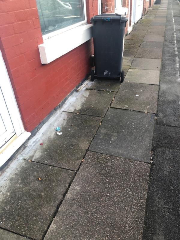 Report made previously but couldn't be found! Large number of cigarette ends and two pieces of wood-92 Livingstone Street, Leicester, LE3 0QY