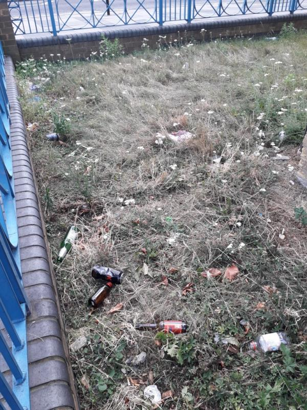Grass area at junction of Romford Road and Carnarvon Road heavily littered with alcohol bottles and other waste. LBN land -Regnas House, 36 Carnarvon Road, London, E15 4JJ