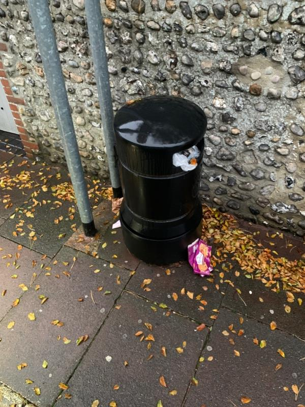 Bin needs to be emptied -58 Meads Road, Eastbourne, BN20 7QJ