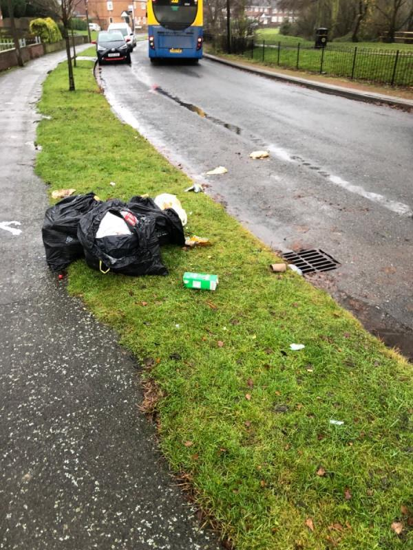 Domestic waste left on path-149 Meldon Drive, Wolverhampton, WV14 8BE