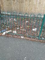 there is a lot of litter around Connaught Rd image 1-16 Connaught Road, Wolverhampton, WV14 6NY