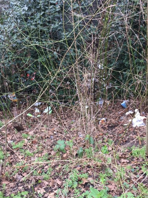 Along the footpath adjacent to car park there is loads of litter. There's quite a long stretch unable to get all of it in the photo-Royal Docks Road, London, E6 6LG