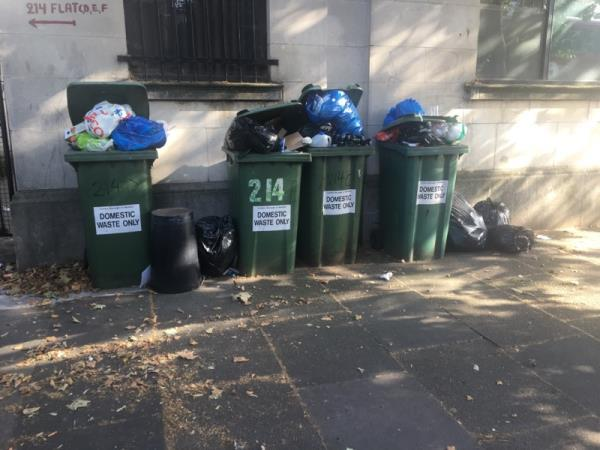 The bins has not been taken for 2 weeks it is overflowing and very smelly.. There's flys all around the area.. please sort this issue as soon as possible -214 Romford Road, London, E7 9HY