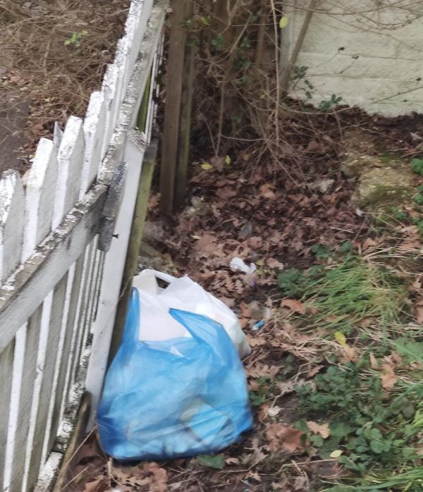 Rubbish bags have been dumped again next to the hedge inside the fence-141 Rivulet Road, Tottenham, N17 7JH