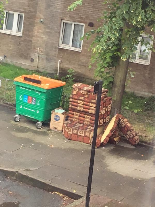 Rubbish -17 Clifford Rd, Canning Town, London E16 4JW, UK