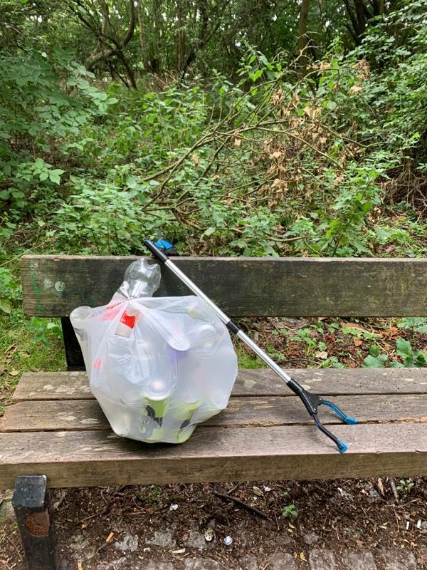 I litter picked these cans and bottles form the Coal Woodland -50 Avon Place, Reading, RG1 3EA