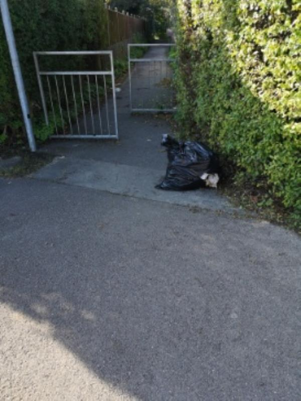 Damped rubbish on Wensley road-229 Wensley Road, Reading, RG1 6EE