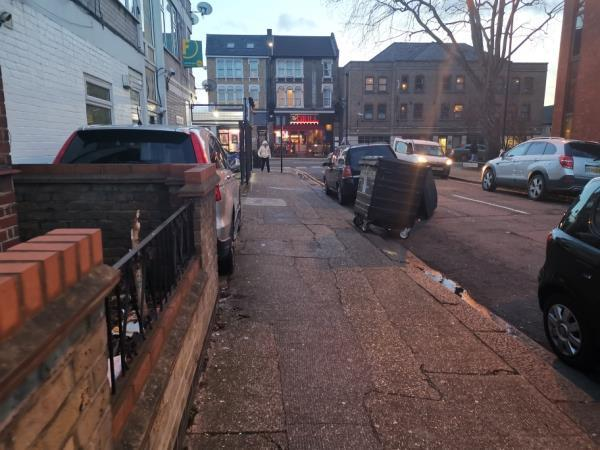Met ur rep replacing bins back to their proper place by Waverly Lodge as they were dumped off site causing flytipping, yesterday, but by evening they were dumped back on street in residential bays, didn't take long get back to their irresponsible ways, see pics image 1-12 Litchfield Avenue, London, E15 1EN