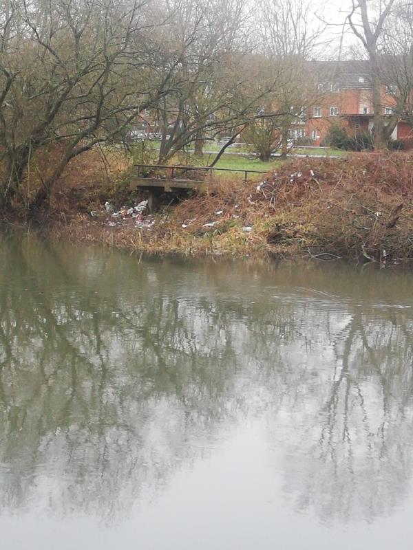 Many many plastic bottles on the bank, some in the canal -25 Rose Kiln Ln, Reading RG2 0JZ, UK